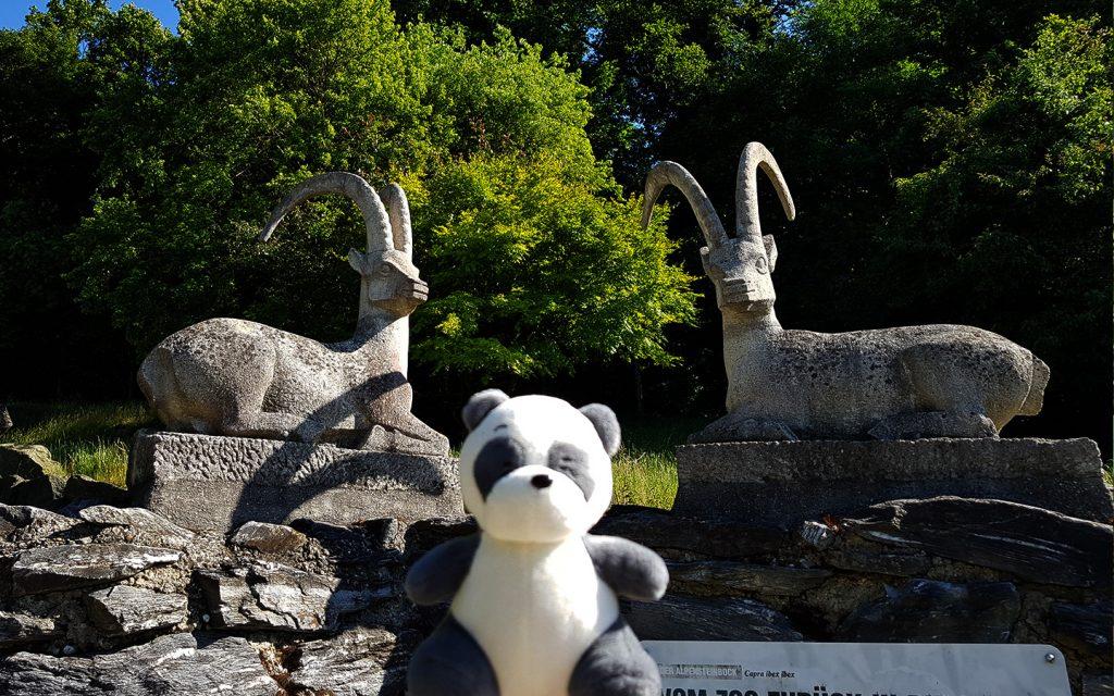 Ibex statues at Zoo Vienna, Austria