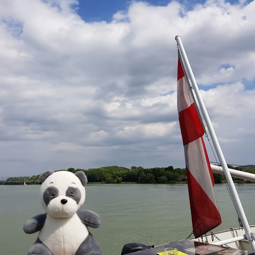Plushie panda Mister Wong on a ship on Danube River, in front of the Austrian flag in the back of the ship.
