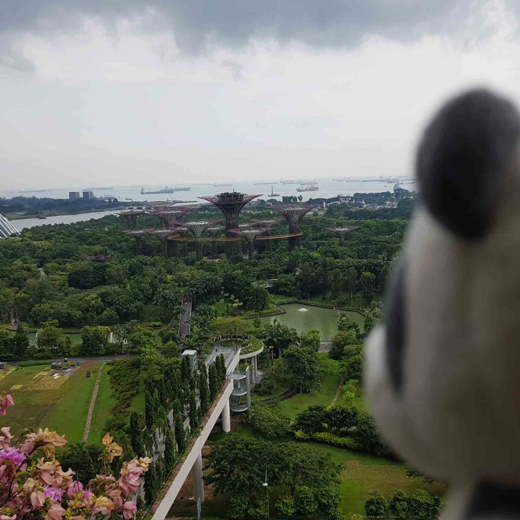 Top View of the Gardens by the Bay from 22nd floor of Marina Bay Sands Hotel, Singapore