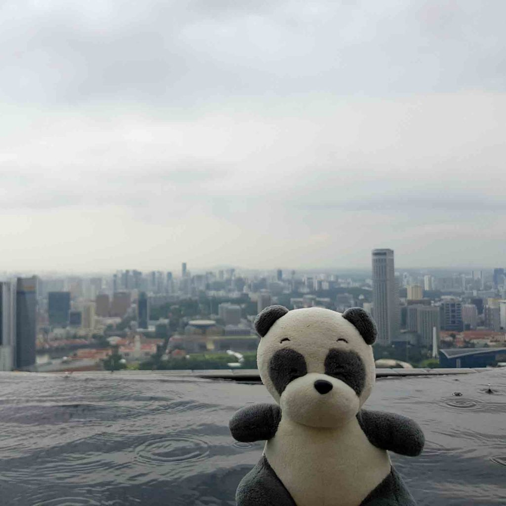 Mister Wong in the Infinity Pool on top of Marina Bay Sands Hotel, Singapore